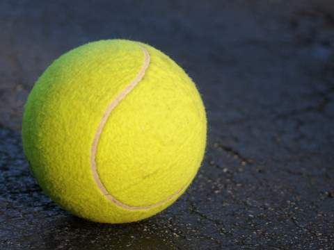 Swansea Gardens Tennis