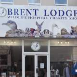 Brent Lodge Charity Shop